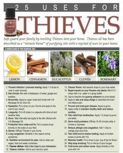 Thieves-by-rewindforlifeblogspotcom